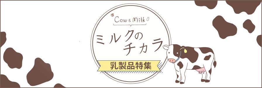 ミルク,乳製品特集